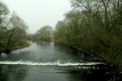 River Severn, Lower Leighton, Welshpool