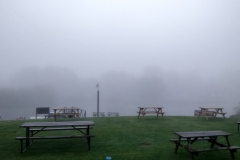 Foggy start from Tewkesbury