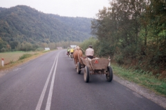 Traditional agricultural horse drawn cart
