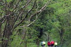 Swainsley Woods, Manifold Trail